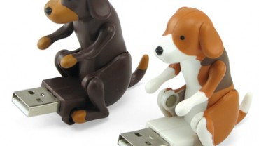 usb-humping-dog