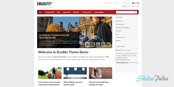 Erudito wordpress theme