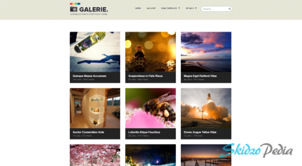 Galerie wp theme