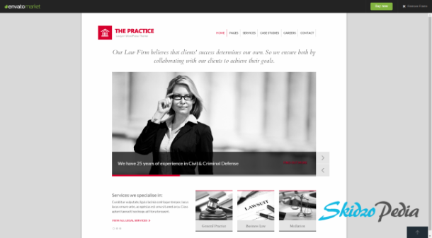 the practise wordpress theme
